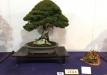 kokufu-ten-912017-2-dalis-042