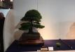 kokufu-ten-912017-2-dalis-053