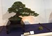 kokufu-ten-912017-2-dalis-056