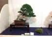 kokufu-ten-912017-2-dalis-060