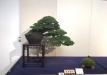 kokufu-ten-912017-2-dalis-069