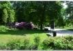 rododendrai-sereikiskese-2017-08