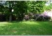 rododendrai-sereikiskese-2017-15
