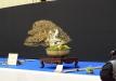 trophy2020_ekspozicija073