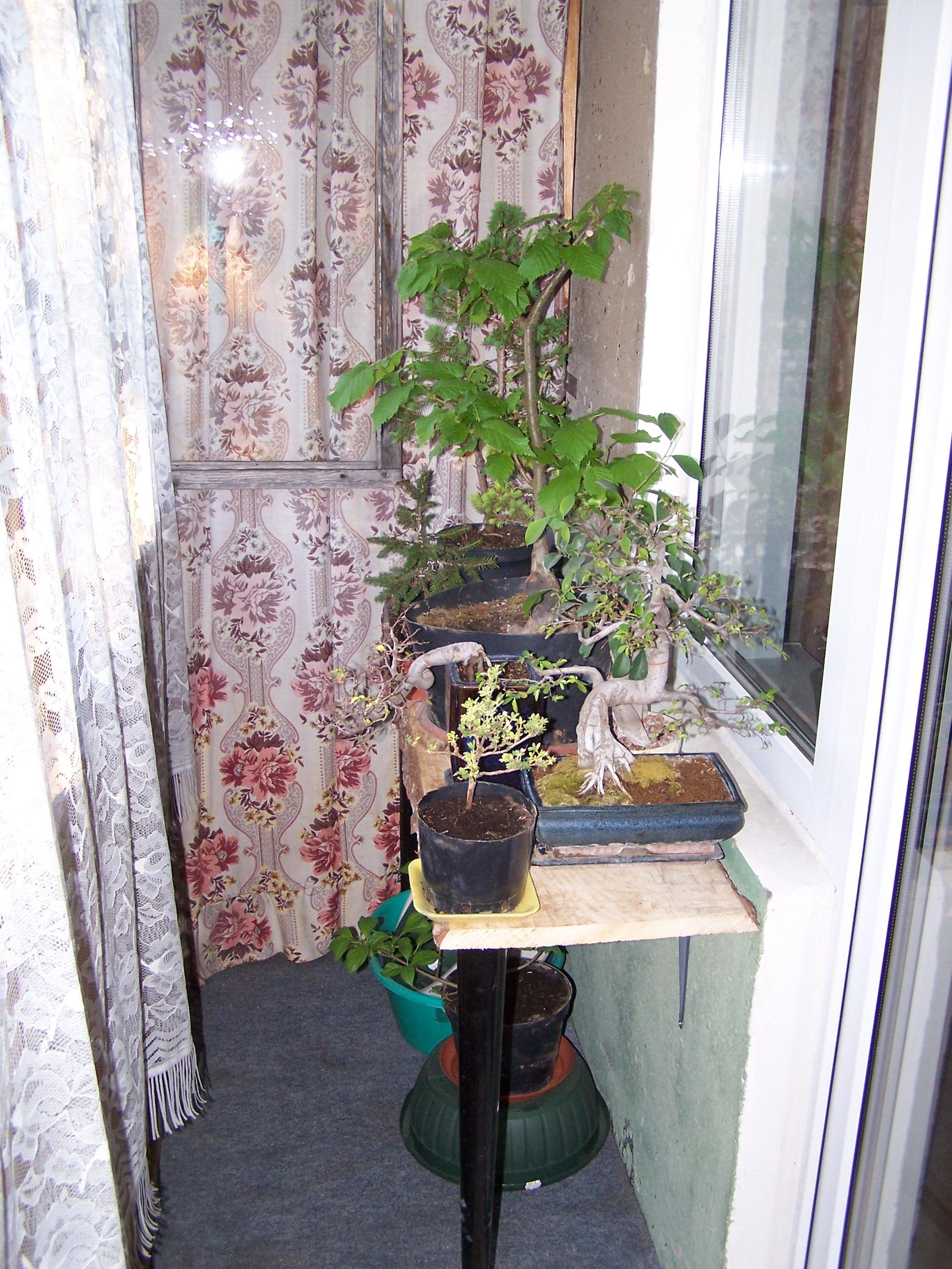 Balkong inspiration apartment balcony: hos jorunn : balkong ...