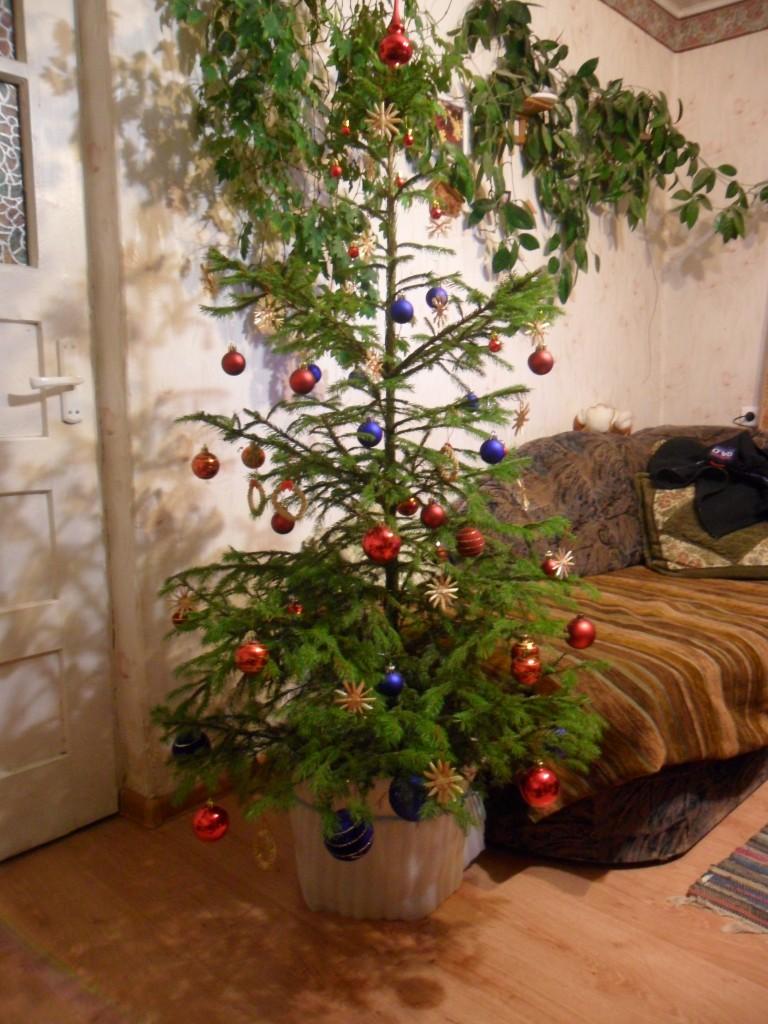 2012 metų Kalėdos