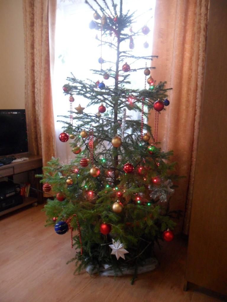 2013 metų Kalėdos