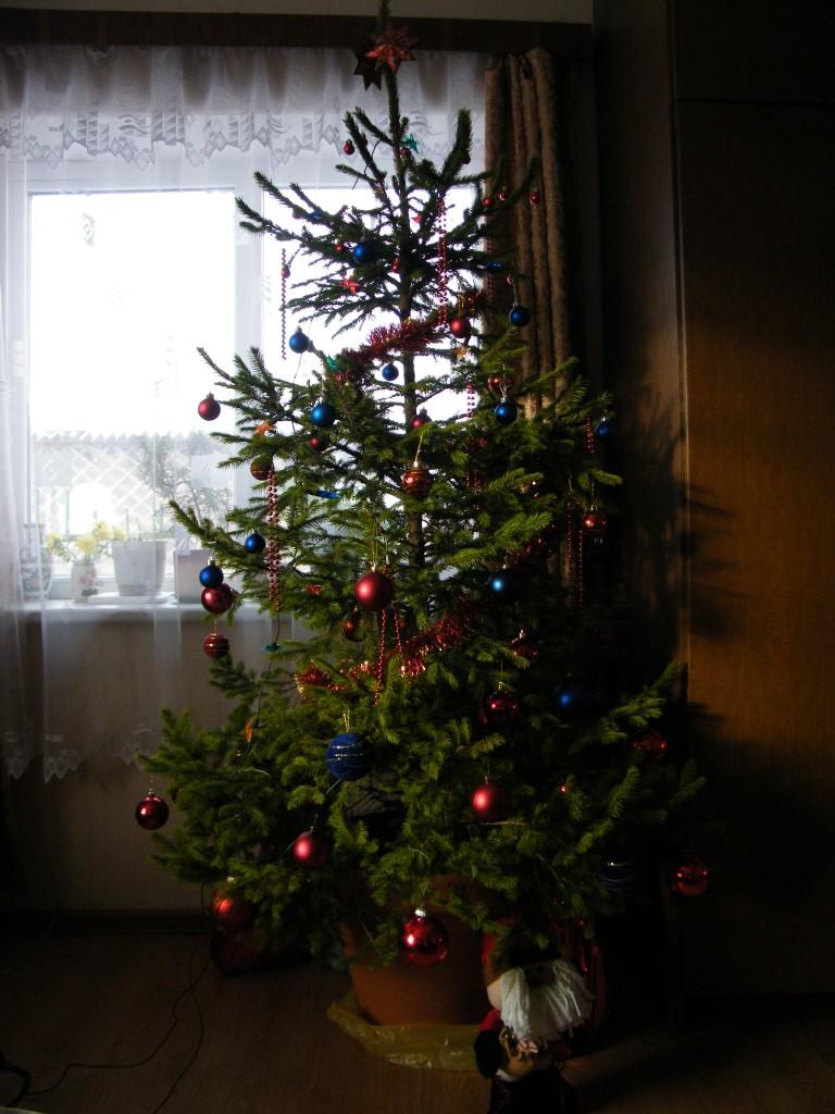 2014 metų Kalėdos