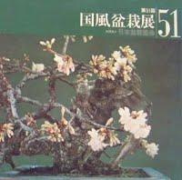 1977 metų 51 parodos albumo viršelis