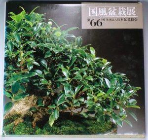 1992 metų 66 parodos albumo viršelis