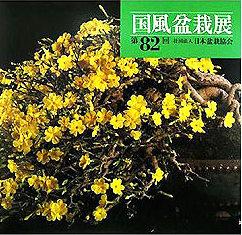 2008 metų 82 parodos albumo viršelis